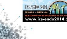 ice endo + bastion